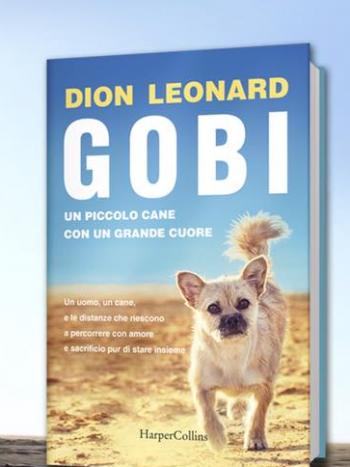 gobi cover