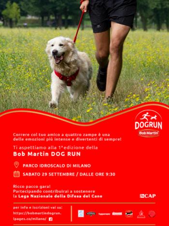 LOCANDINA Bob Martin Dog Run